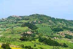 Paesaggio tipico con le colline - Toscana, Italia della Toscana Fotografia Stock Libera da Diritti