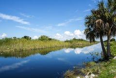 Paesaggio tipico dei terreni paludosi di Florida Fotografie Stock
