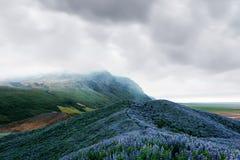 Paesaggio tipico dell'Islanda con le montagne Immagini Stock Libere da Diritti