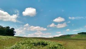 Paesaggio tipico di inglese Fotografia Stock