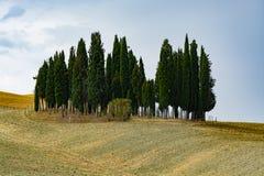 Paesaggio tipico in Toscana, fattoria sulle colline di Val d'Or Fotografia Stock Libera da Diritti