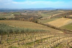 Paesaggio toscano Fotografia Stock