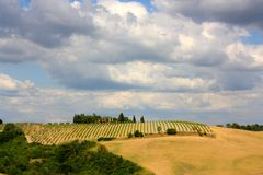Paesaggio toscano, Italia Fotografia Stock Libera da Diritti
