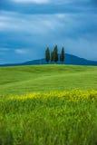 Paesaggio toscano tipico Fotografia Stock Libera da Diritti
