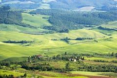 Paesaggio toscano tipico verde fotografia stock