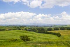 Paesaggio toscano tipico verde nel tempo di primavera fotografie stock