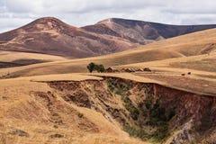 Paesaggio tradizionale dell'altopiano del Madagascar Immagini Stock Libere da Diritti