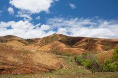 Paesaggio tradizionale dell'altopiano del Madagascar Fotografie Stock Libere da Diritti