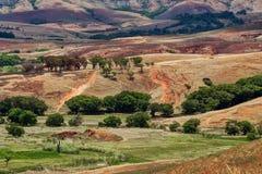 Paesaggio tradizionale della collina del Madagascar Immagine Stock