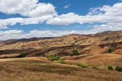 Paesaggio tradizionale della collina del Madagascar Immagini Stock Libere da Diritti