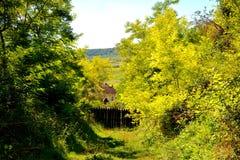 Paesaggio in Transylvania Fotografie Stock
