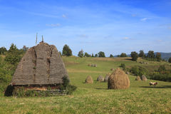 paesaggio trnaylvanian Fotografia Stock