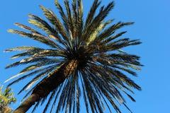 Paesaggio tropicale è quasi l'estate immagini stock