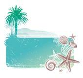Paesaggio tropicale & abitanti del mare Immagine Stock