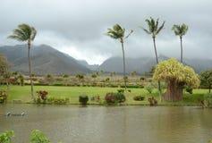 Paesaggio tropicale da Maui, Hawai Fotografie Stock