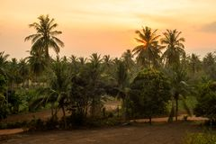 Paesaggio tropicale della campagna Immagini Stock