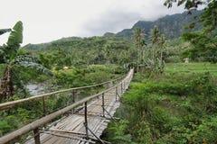 Paesaggio tropicale nel modo a Bajawa Fotografia Stock Libera da Diritti