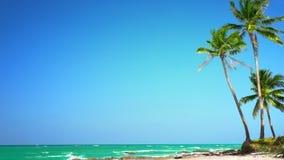 Paesaggio tropicale stupefacente della spiaggia con la palma, la sabbia bianca e le onde di oceano del turchese Myanmar (Birmania video d archivio