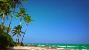 Paesaggio tropicale stupefacente della spiaggia con la palma, la sabbia bianca e le onde di oceano del turchese Myanmar (Birmania stock footage