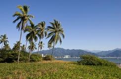 Paesaggio tropicale sulla Costa del Pacifico immagine stock libera da diritti