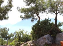 Paesaggio Turchia della natura Immagini Stock