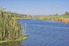 Paesaggio ucraino con il fiume. Fotografie Stock