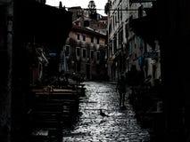 Paesaggio urbano da Rovigno, Croazia, con lo shilouette di un gabbiano e di una donna, immagine lunatica fotografie stock