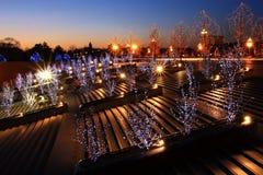 paesaggio urbano degli indicatori luminosi ai tramonti Immagini Stock Libere da Diritti