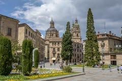 Paesaggio urbano del centro di Salamanca Immagini Stock Libere da Diritti
