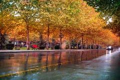 Paesaggio urbano di autunno a capitale di Tirana, Albania fotografie stock libere da diritti