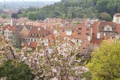 Paesaggio urbano di Praga Fotografia Stock Libera da Diritti