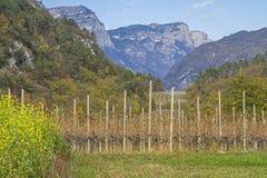 Paesaggio in Val Cavedine in Trentino Immagine Stock Libera da Diritti