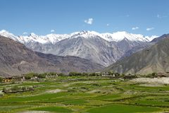 Paesaggio in valle di Nubra, Ladakh, India Fotografia Stock