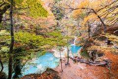 Paesaggio variopinto alla fonte di urederra, Spagna di autunno Immagini Stock Libere da Diritti