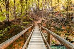 Paesaggio variopinto alla fonte di urederra, Spagna di autunno Fotografie Stock Libere da Diritti
