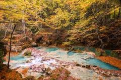 Paesaggio variopinto alla fonte di urederra, Spagna di autunno Immagine Stock Libera da Diritti
