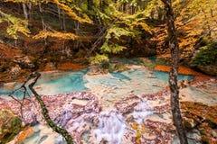 Paesaggio variopinto alla fonte di urederra, Spagna di autunno Immagini Stock