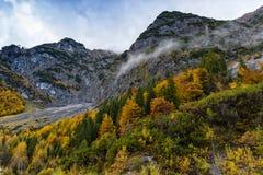 Paesaggio variopinto delle alte montagne degli alberi di caduta di autunno nelle alpi L'Austria, Tirolo Fotografia Stock
