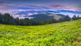 Paesaggio variopinto di estate nelle montagne carpatiche. Fotografia Stock Libera da Diritti