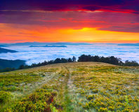 Paesaggio variopinto di estate nelle montagne carpatiche. Immagini Stock