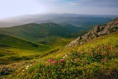 Paesaggio variopinto di estate nelle montagne carpatiche Fotografia Stock Libera da Diritti