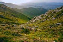 Paesaggio variopinto di estate nelle montagne carpatiche Superficie di pietra Immagini Stock