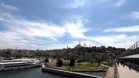 Paesaggio variopinto sulla città di Costantinopoli, sulla chiara acqua, sugli alberi verdi, sul cielo blu e sui tetti ordinati de video d archivio