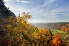 Paesaggio variopinto vibrante di autunno nella luce del giorno Fotografie Stock Libere da Diritti
