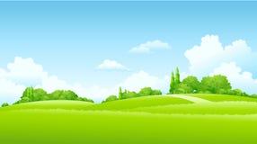 Paesaggio verde illustrazione vettoriale