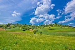 Paesaggio verde africultural idilliaco della Croazia Fotografia Stock