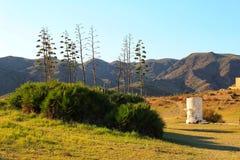 Paesaggio verde a Almeria, Spagna Fotografia Stock