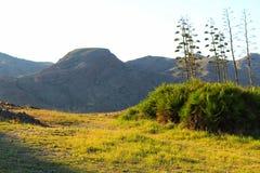 Paesaggio verde a Almeria, Spagna Fotografia Stock Libera da Diritti