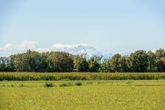 Paesaggio verde del paese vicino a Besate, Italia Immagini Stock Libere da Diritti