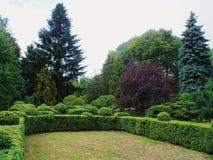 paesaggio verde dell'arboreto nella città di Kiev Fotografia Stock Libera da Diritti